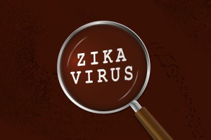 The Zika virus has spread to Florida. Learn how you can protect yourself and your patients.